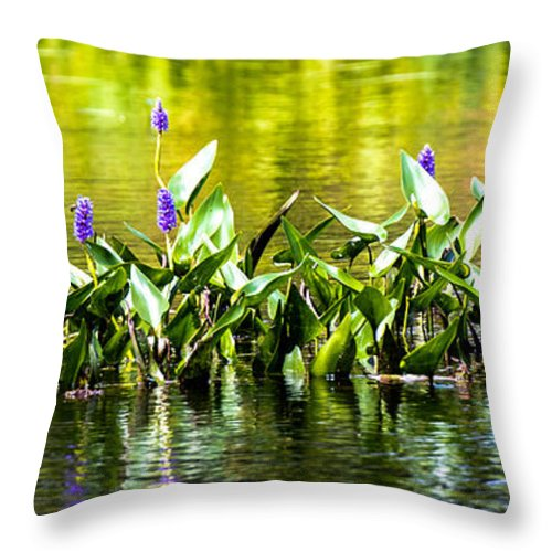 River Throw Pillow featuring the photograph Flowers On The Connecticut by Sherman Perry