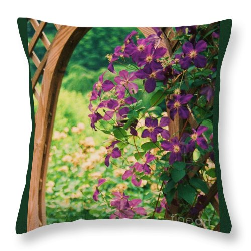Floral Throw Pillow featuring the painting Flowers On Vine by Eric Schiabor