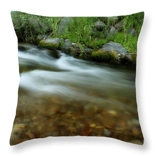 River Throw Pillow featuring the photograph Flowing by Idaho Scenic Images Linda Lantzy