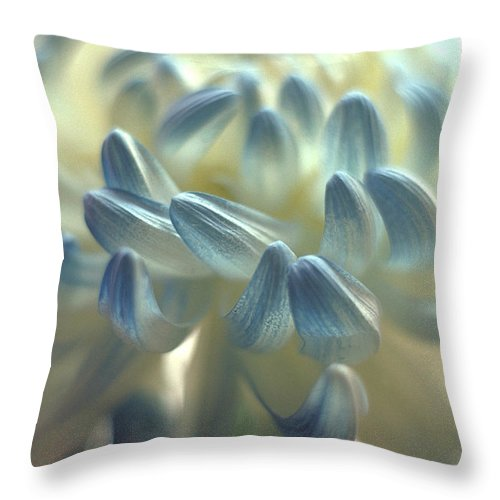 Flower Throw Pillow featuring the photograph Flowing Petals by Thomas Firak