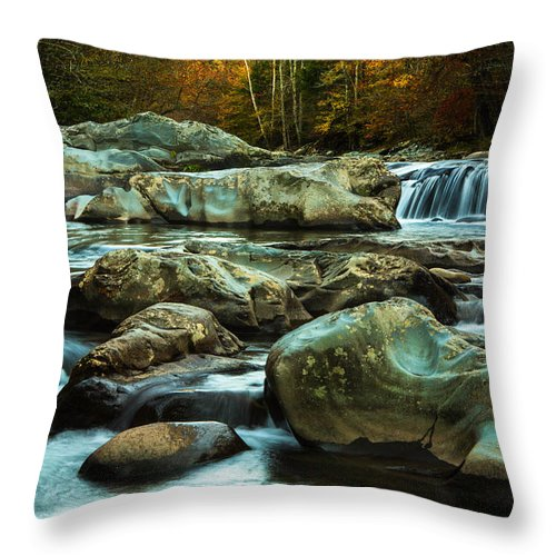 Autumn Throw Pillow featuring the photograph Flowing River On Greenbrier Cove Road Smoky Mountains National P by Carol Mellema