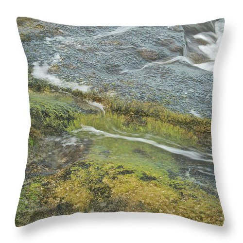 Water Throw Pillow featuring the photograph Flowing Water by Michael Peychich