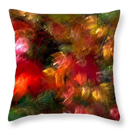 Canada Throw Pillow featuring the photograph Flury by Doug Gibbons
