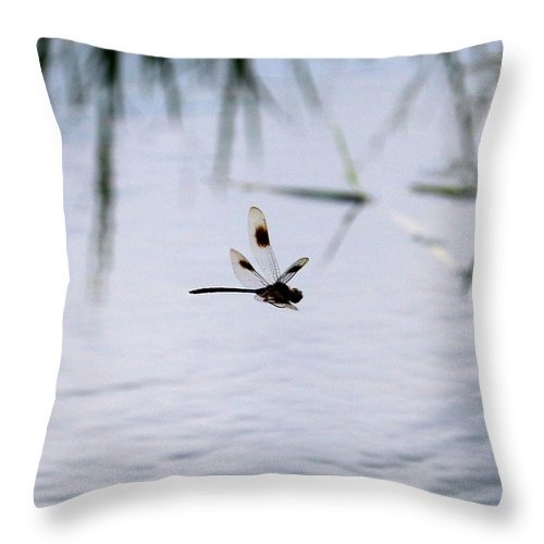 Dragonfly Throw Pillow featuring the photograph Flying Dragonfly Over Pond With Reeds by Carol Groenen