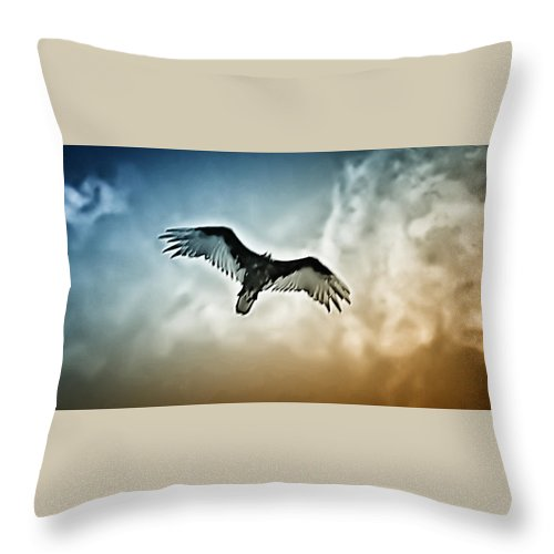 Falcon Throw Pillow featuring the photograph Flying Falcon by Bill Cannon