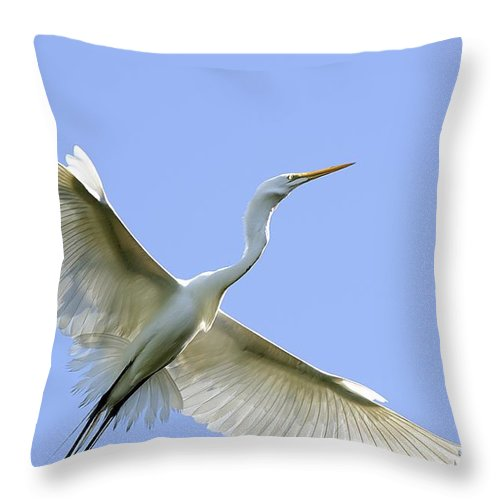 Birds Throw Pillow featuring the photograph Flying High by Kenneth Albin