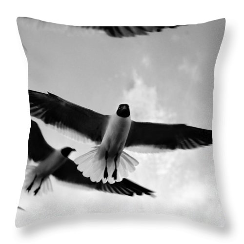 Bird Throw Pillow featuring the photograph Flying High by Marilyn Hunt
