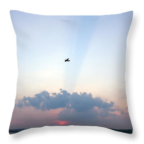 Sky Throw Pillow featuring the photograph Flying In Sunset by Odon Czintos