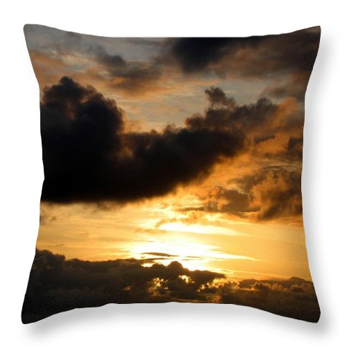 Seagull Throw Pillow featuring the photograph Flying Solo by Will Borden