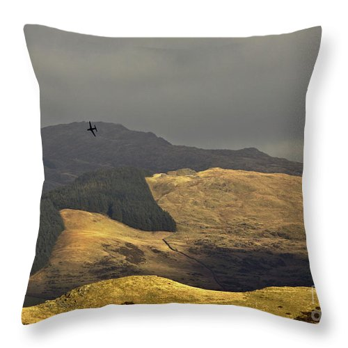 Great Britain Throw Pillow featuring the photograph Flying To The Fields Of Gold by Angel Ciesniarska