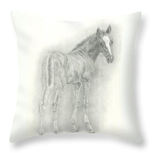 Foal Throw Pillow featuring the drawing Spring Foal by Jennifer Nilsson