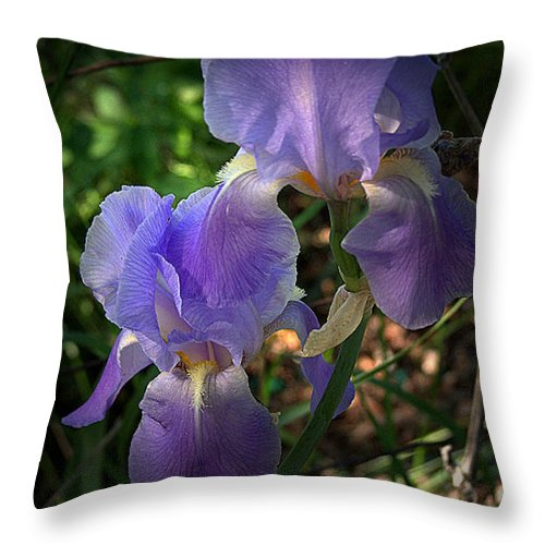 Flower Throw Pillow featuring the photograph Focus On The Iris by Julie Grace