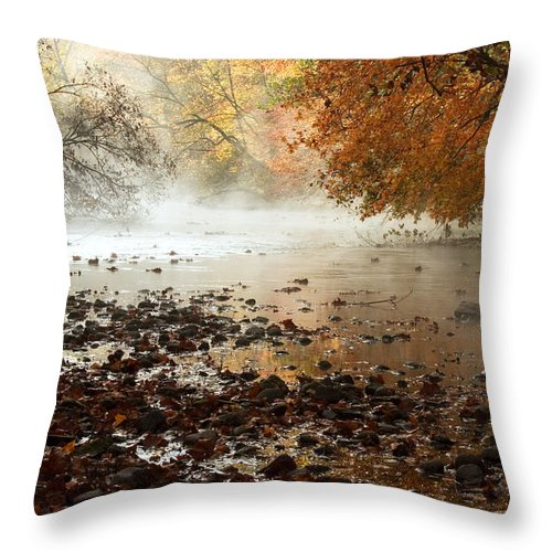 River Throw Pillow featuring the photograph Fog And Color by Amanda Kiplinger