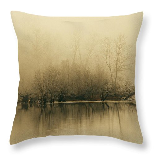 Day Throw Pillow featuring the photograph Fog Hovers Above The James River by Raymond Gehman