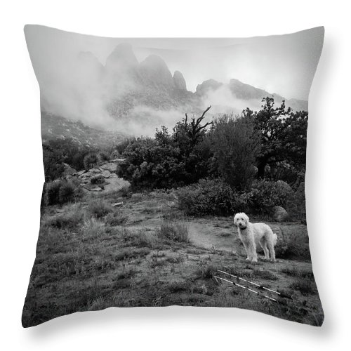 Teig Throw Pillow featuring the photograph Fog In The Organ Mountains by Cary Leppert