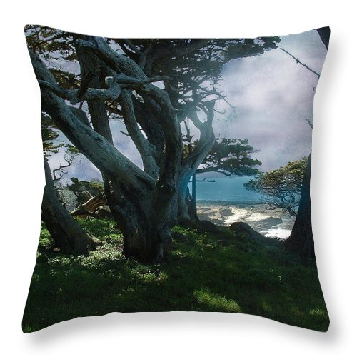 Cypress Throw Pillow featuring the photograph Fog Intrusion Point Lobos by Wayne King