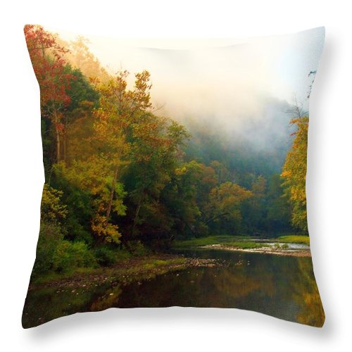 Throw Pillow featuring the photograph Foggy Morning by Geary Barr