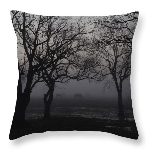 Fog Throw Pillow featuring the photograph Foggy Morning by Jerry Connally