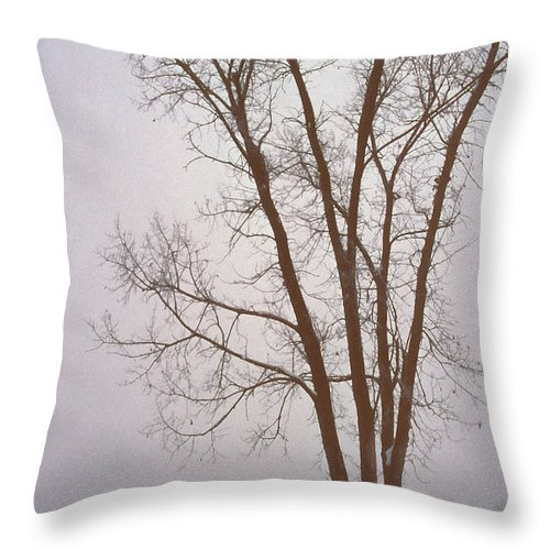 Nature Throw Pillow featuring the photograph Foggy Morning Landscape 13 by Steve Ohlsen