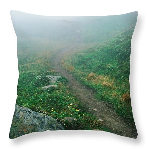 Fog Throw Pillow featuring the photograph Foggy Mountain Path by Ronnie Glover