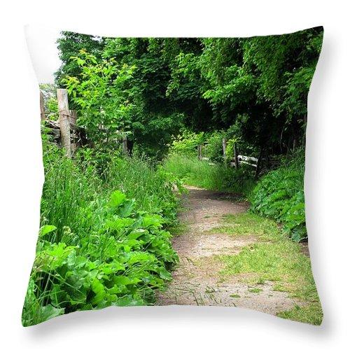 Path Throw Pillow featuring the photograph Follow by Ian MacDonald