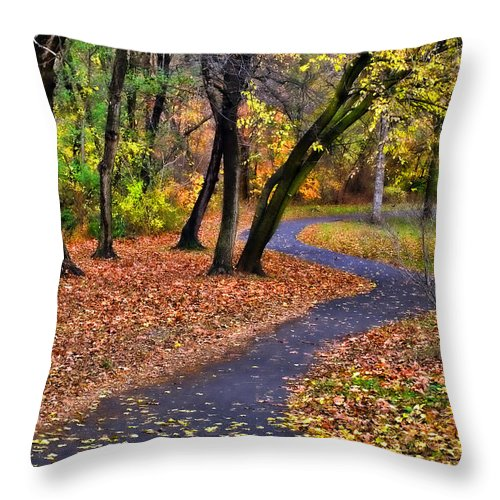 Autumn Throw Pillow featuring the photograph Follow The Path by June Marie Sobrito