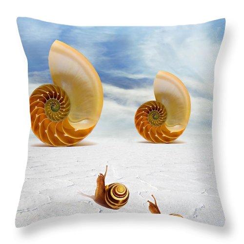 Photodream Art Throw Pillow featuring the digital art Follow Your Dreams by Jacky Gerritsen