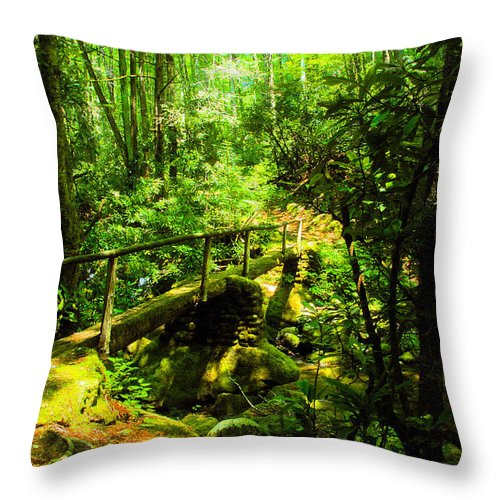 Art Throw Pillow featuring the painting Foot Bridge by David Lee Thompson