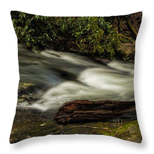 Footbridge Throw Pillow featuring the photograph Footbridge Over Raging Moccasin Creek by Barbara Bowen