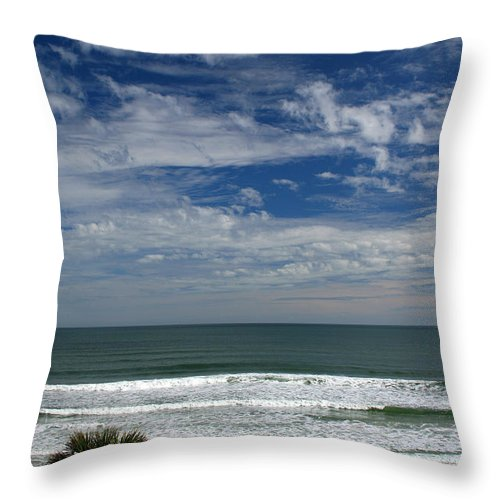 Beach Sky Cloud Clouds Blue Water Wave Waves Palmtree Tree Palm Sand Sun Sunny Vacation Travel Throw Pillow featuring the photograph For Your Pleasure by Andrei Shliakhau