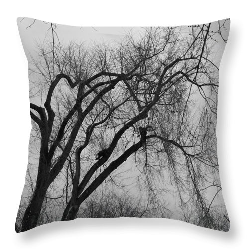 Tree Throw Pillow featuring the photograph Foreboding by Michelle Miron-Rebbe