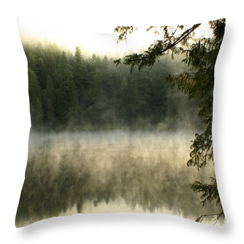 Fog Throw Pillow featuring the photograph Forest And Fog by Idaho Scenic Images Linda Lantzy