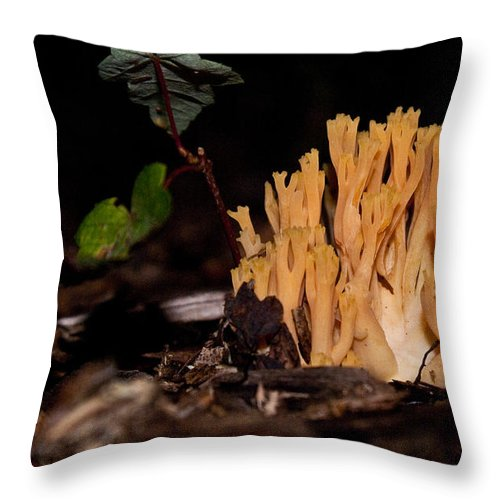 Coral Throw Pillow featuring the photograph Forest Coral Fungi by Douglas Barnett