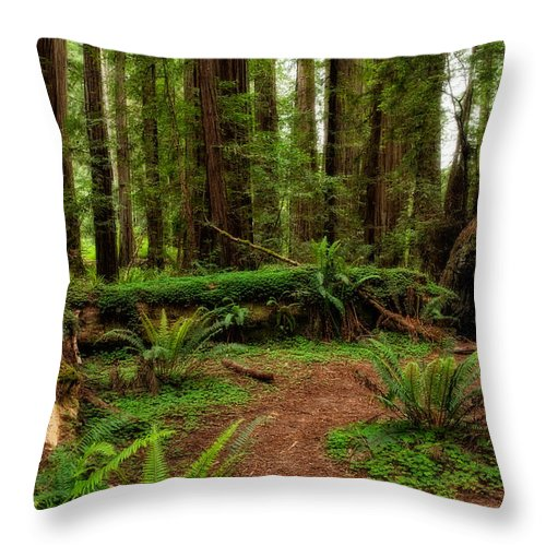 Forest Court Throw Pillow featuring the photograph Forest Court by George Buxbaum