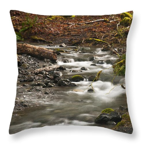 River Throw Pillow featuring the photograph Forest Creek by Chad Davis