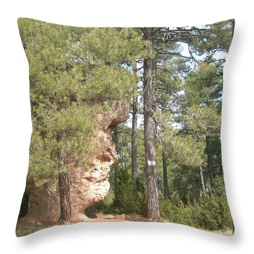 Landscape Throw Pillow featuring the photograph Forest Face by Valerie Ornstein