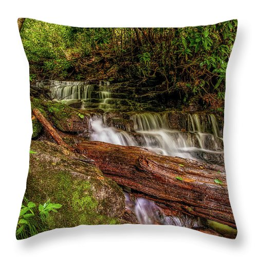 Christopher Holmes Photography Throw Pillow featuring the photograph Forest Falls by Christopher Holmes