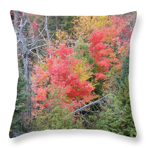 Fall Throw Pillow featuring the photograph Forest Fire by Kelly Mezzapelle