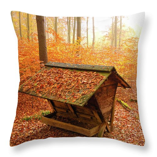 Autumn Throw Pillow featuring the photograph Forest In Autumn With Feed Rack by Matthias Hauser