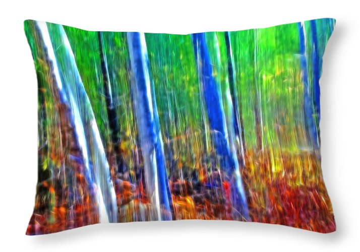 Forest Throw Pillow featuring the photograph Forest Magic by Bill Morgenstern