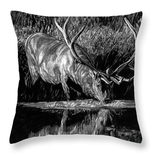 Elk Throw Pillow featuring the drawing Forest Royal Bull Elk by Dan Pearce
