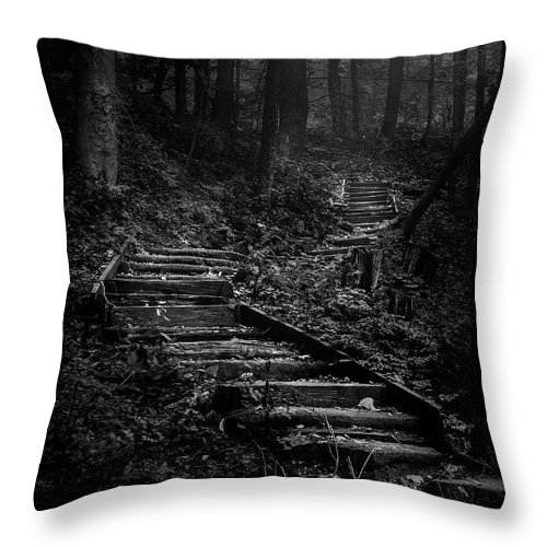Landscape Throw Pillow featuring the photograph Forest Stairs by Scott Norris