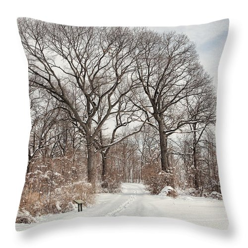 Snow Throw Pillow featuring the photograph Forever Wild by June Marie Sobrito