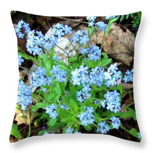 Forget-me-not Throw Pillow featuring the photograph Forget-me-not by Will Borden