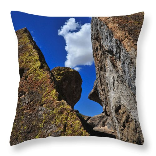 Forget Your Perfect Offering Throw Pillow featuring the photograph Forget Your Perfect Offering by Skip Hunt