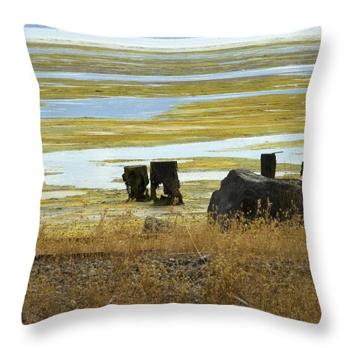 Swamp Throw Pillow featuring the photograph Forgotten Pier by Jessica Wakefield