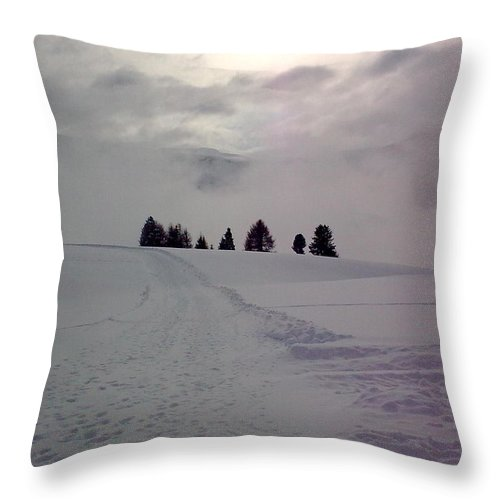 Landscape Throw Pillow featuring the photograph Forlorn Trees by Valerie Ornstein