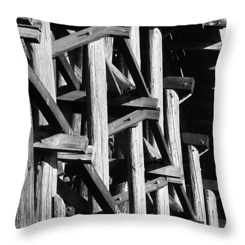 Abstract Throw Pillow featuring the photograph Form And Function 1 by Xueling Zou