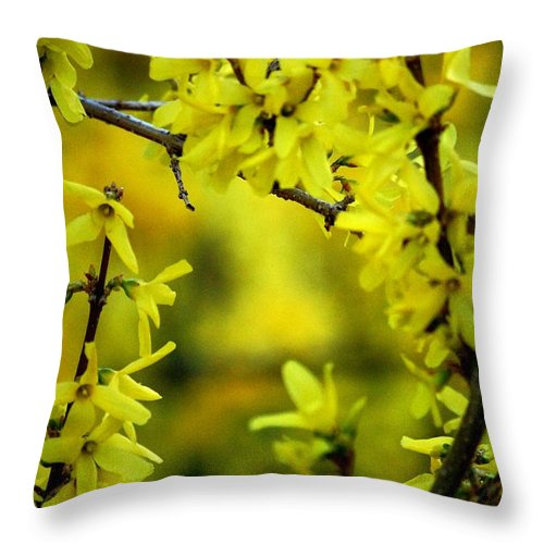 Spring Throw Pillow featuring the photograph Forsythia At The Hacienda by David Lane