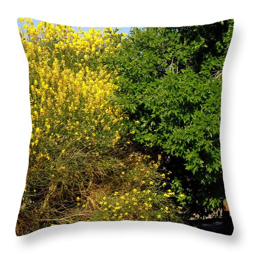 Forsythia Throw Pillow featuring the photograph Forsythia by Stephanie Moore